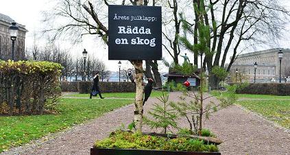 radda-en-skog
