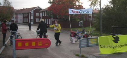 falun_cyklar